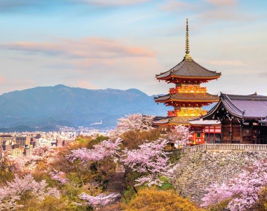 Japan group tour holiday for Ugandans